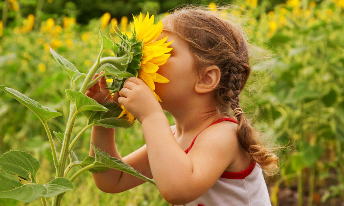 بازی کردن در طبیعت چه اهمیتی دارد؟